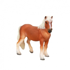 Haflinger At