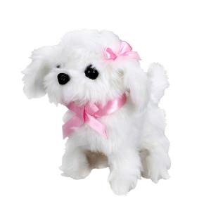 Sevimli Köpek Maltese