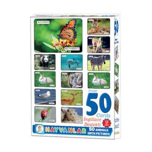 Resimlerle Hayvanlar Alemi İngilizce Destekli Eğitici Kartları 50 Parça