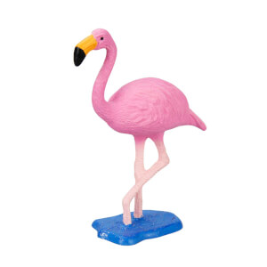 Flamingo Kuş