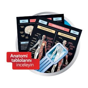 Bilim Seti : İnsan Vücudu Ve Anatomi