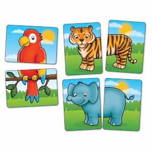 Jungle Heads and Tails Hafıza Oyunu