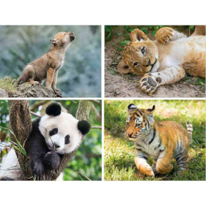 20 + 60 + 100 + 180 Parça Puzzle : Wildlife