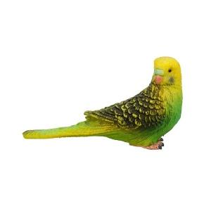 Yeşil Muhabbet Kuşu
