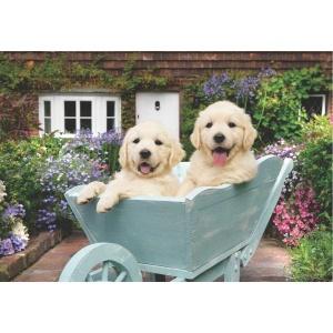 260 Parça Puzzle : Bahçıvan Köpekler