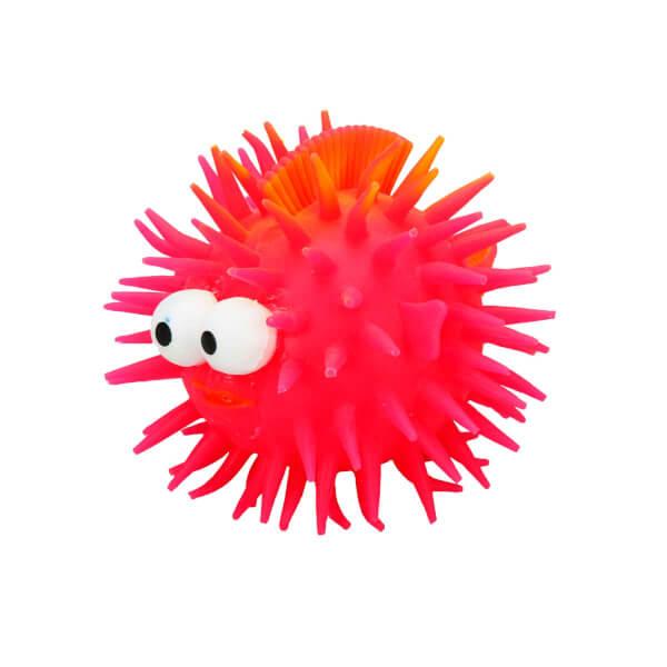 Işıklı Yumuşak Kirpi Balık