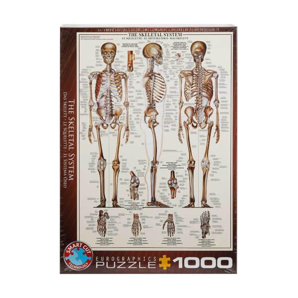 1000 Parça Puzzle : The Skeletal System