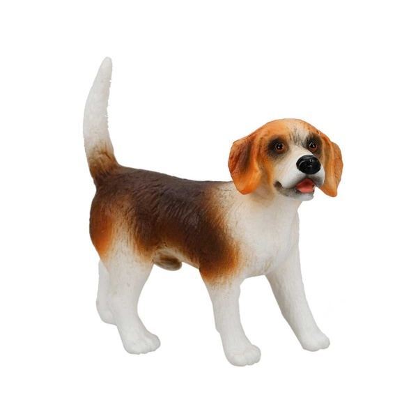 Beagle Henry Köpek